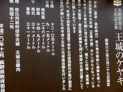 佐久 (59)