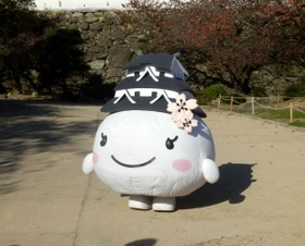 姫路 (43)