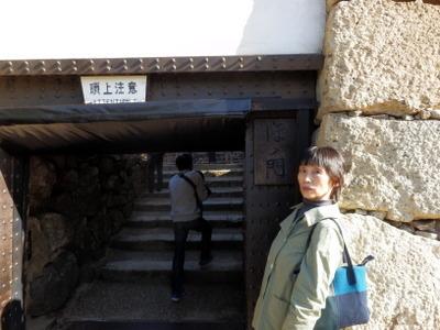 姫路 (63)