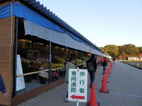姫路城夕暮れ (4)