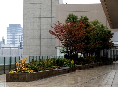 大阪駅 (28)