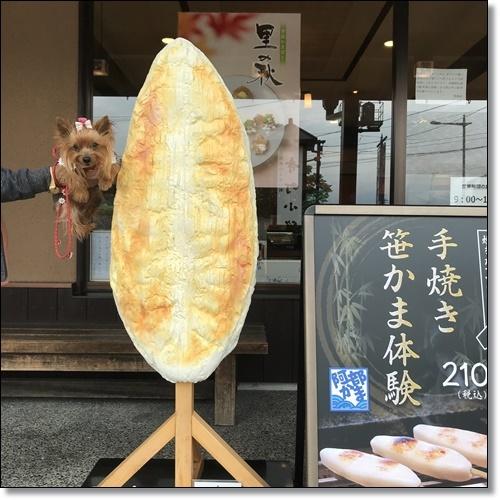 芋煮会にGOIMG_1835-20171017