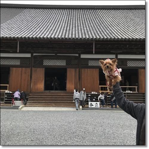 芋煮会にGOIMG_1843-20171017