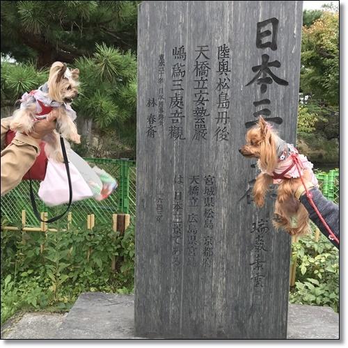 芋煮会にGOIMG_1850-20171017