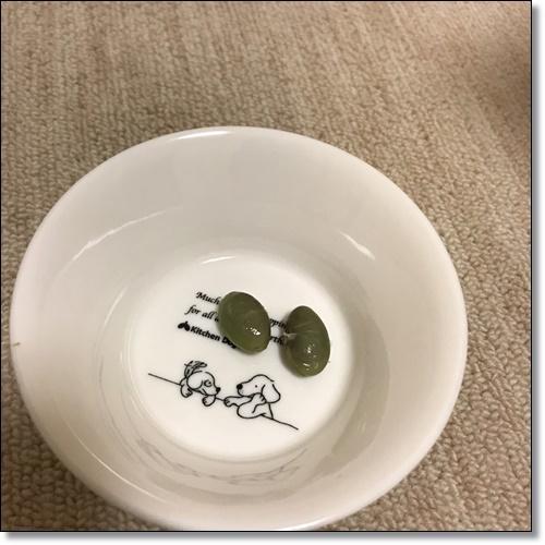 芋煮会にGOIMG_2150-20171017