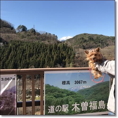 奈良井宿へIMG_2886-20171203