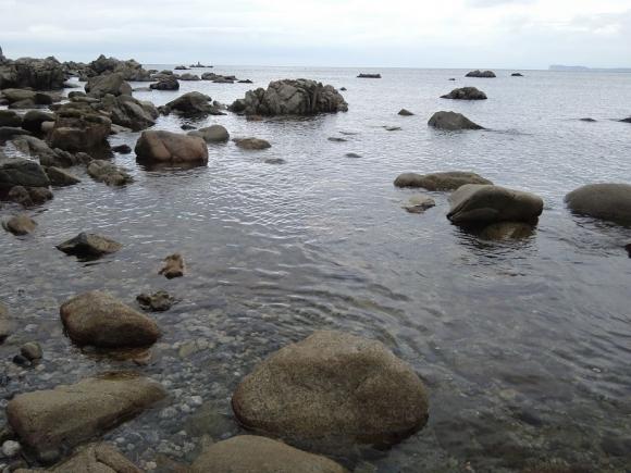 福岡、休暇村 志賀島 釣り 根魚 ムラソイ
