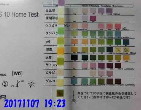 20171107-1923CIMG8586.jpg