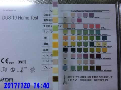 20171120-1440CIMG8841.jpg
