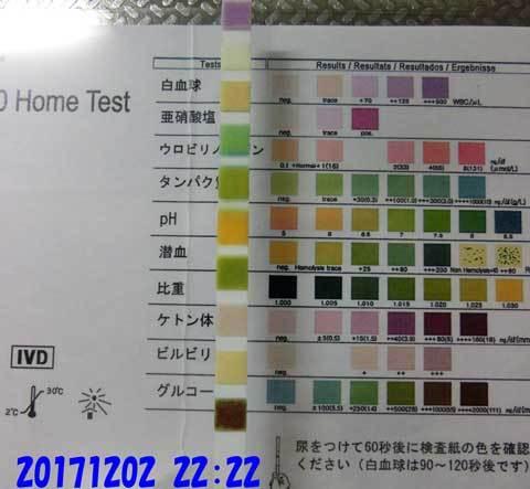 20171202-2222CIMG9048.jpg