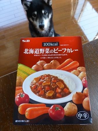 100kcal北海道野菜のビーフカレー1