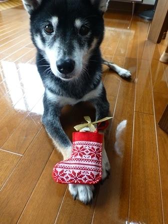 2017クリスマス (3)