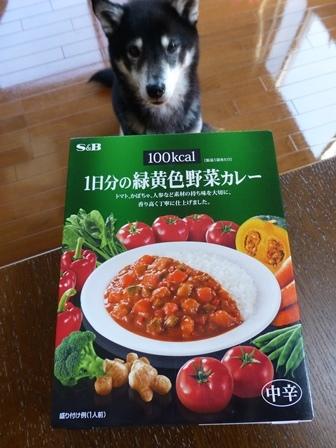 100kcal緑黄色野菜カレー1