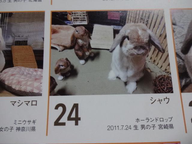 H29 365カレンダー (8)