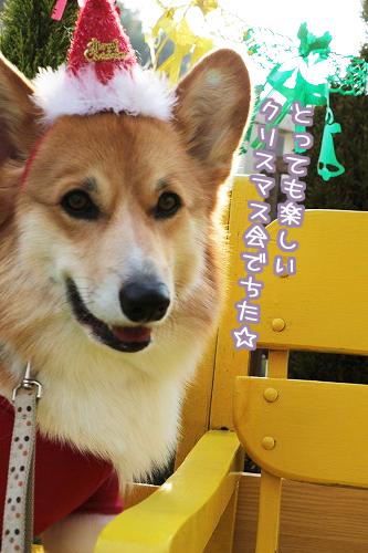 楽しいクリスマス会でちた☆