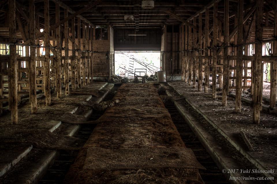 【勘解造の酪農場】北側牛舎内