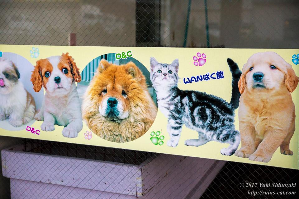 ペットのポスター その1