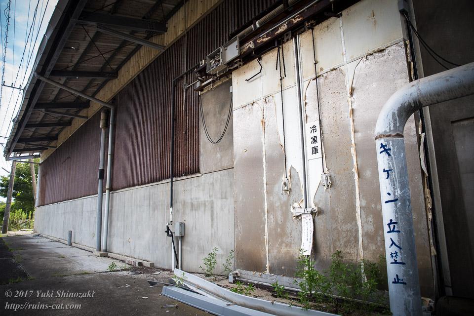 冷凍倉庫出入口