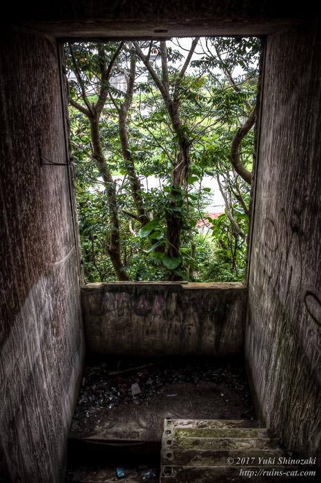 【七福神の家】2階より階段下を見下ろす