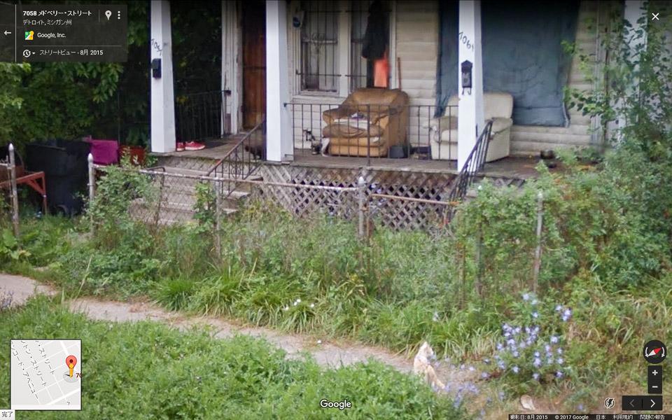 猫屋敷 ストリートビュー02