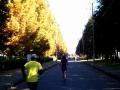 宇都宮マラソン12