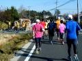 加須こいのぼりマラソン14