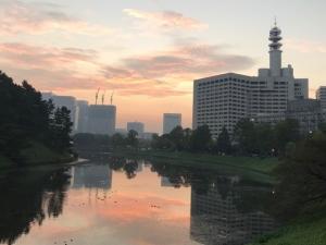 皇居朝ランの風景