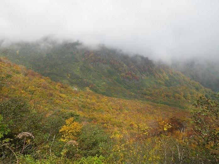 紅葉の雪崩