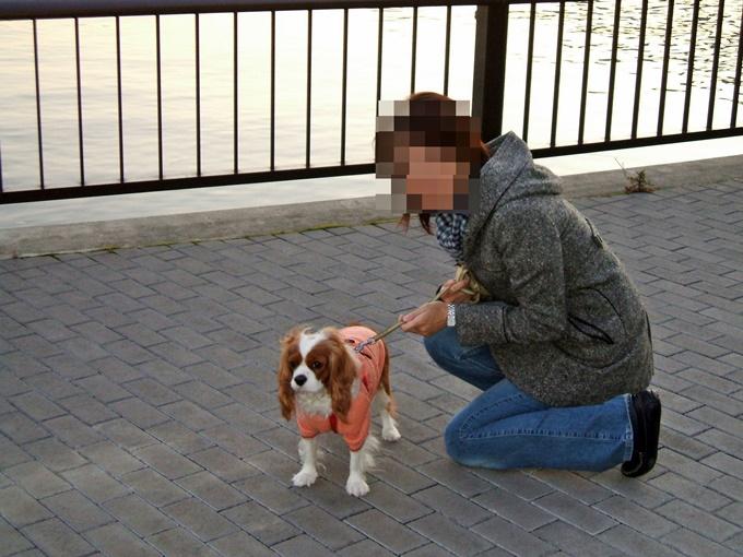 blog2006-01-03 01-34DSCF0290