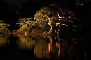栗林公園ライトアップ5