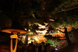 栗林公園ライトアップ6