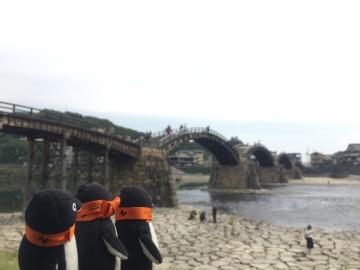 20171001-岩国錦帯橋 (16)