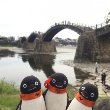20171001-岩国錦帯橋 (15)