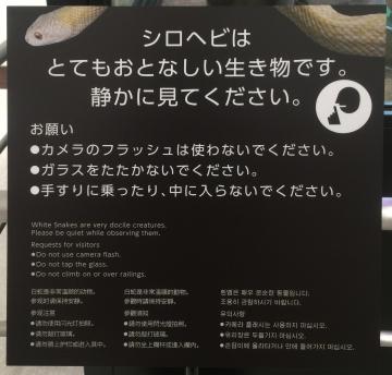 20171001-岩国シロヘビの館 (8)-加工