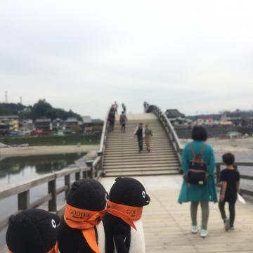 20171001-岩国錦帯橋 (25)