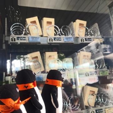 20171001-岩国から岩国錦帯橋空港へ (13)-加工