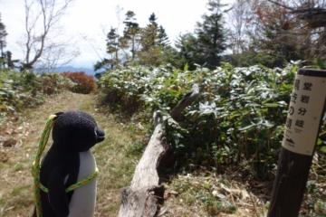 20171001-白砂山 (29)