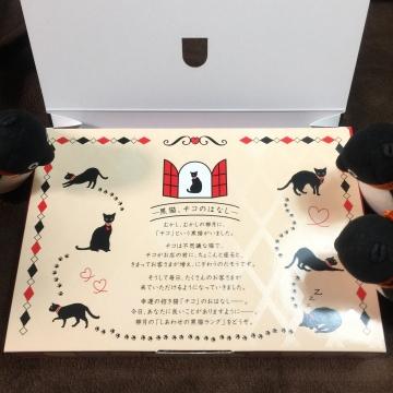 20171108-幸せの黒猫ラング (3)