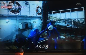 20171111-食彩の王国 (21)-加工