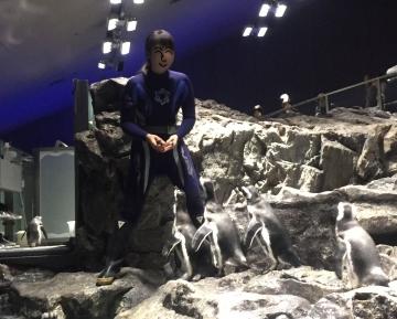 20171111-すみだ水族館 (6)-加工