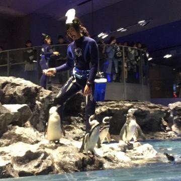 20171111-すみだ水族館 (25)-加工