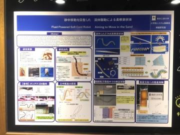20171111-すみだ水族館 (43)