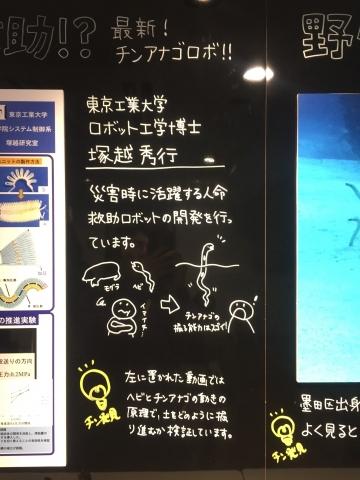 20171111-すみだ水族館 (42)