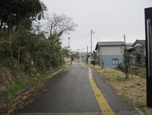 1779_yoita.jpg
