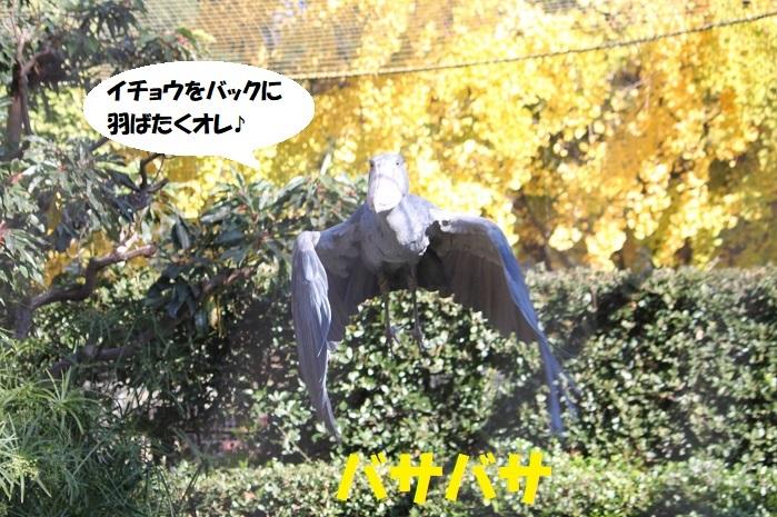 74 - コピー (2)