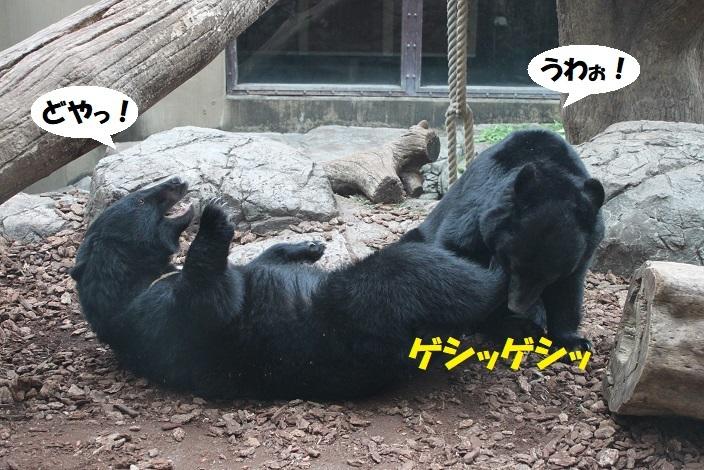 90 - コピー (2)