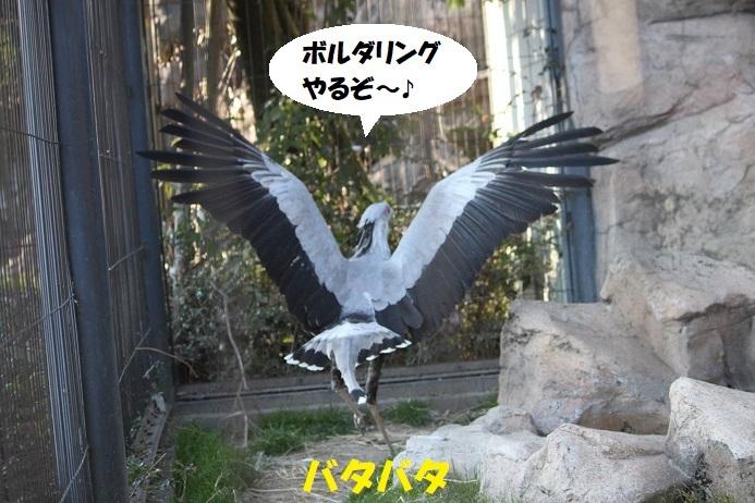 67 - コピー