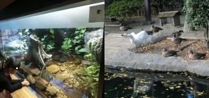 井の頭本園3