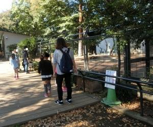 井の頭本園10