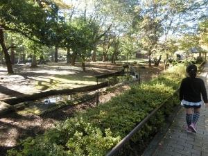 井の頭本園12